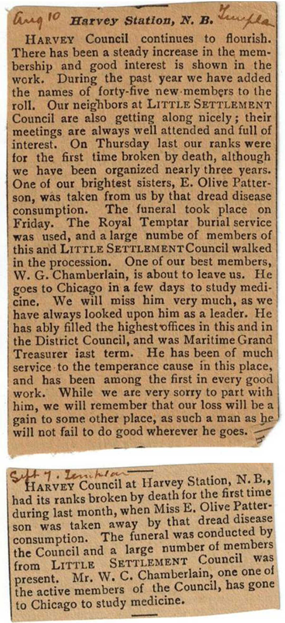 1894 newspaper clipping regarding temperance movement in Harvey